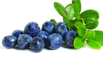 Afinul, o planta cu beneficii importante pentru sanatate