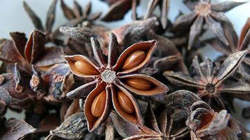 Anasonul, condimentul delicios ce revigoreaza activitatea pancreasului