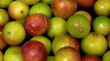 Stiai ca vitamina C este necesara pentru o absorbtie mai buna a fierului in organism?