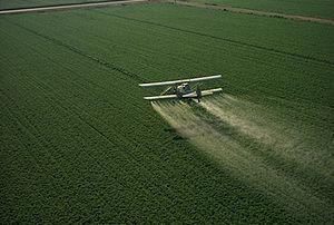 Pesticidele - inamicul ascuns