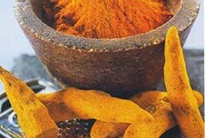 Curry (Curcuma)