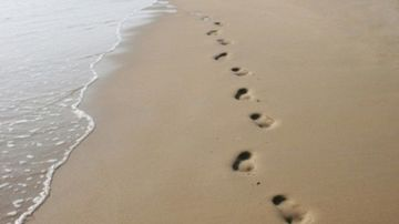 Pasi pe nisip