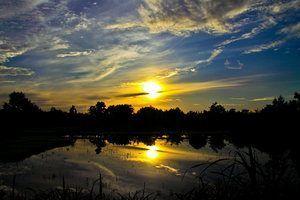 Crainicul soarelui