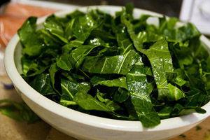 Calciul organic: raportul calciu / fosfor