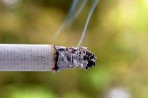 Frunzele de tutun sunt manipulate genetic pentru a produce pesticide