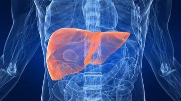 6 organe decisive pentru detoxifierea si vindecarea corpului