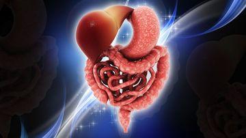Uimitorul sistem digestiv : vindecati-va dinauntru in afara