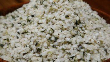 Semintele de canepa, unul dintre cele mai complete alimente