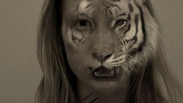 Tigrul si firimiturile
