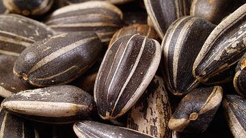 5 beneficii remarcabile pentru sanatate ale semintelor de floarea-soarelui