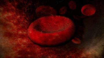 5 lucruri despre grupa sanguina care ar putea sa iti schimbe viata