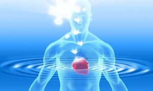 inima inteligenta