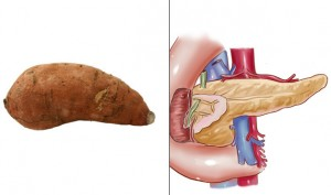 cartof dulce pancreas