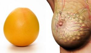 grapefruit sani