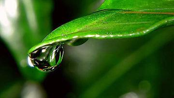 7 sfaturi pentru o frumusete luminoasa si fara chimicale