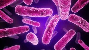 Noi pilule transporta bacterii, nu medicamente, pentru a ne vindeca