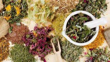 Plante si ierburi benefice pentru plamani si sistemul respirator