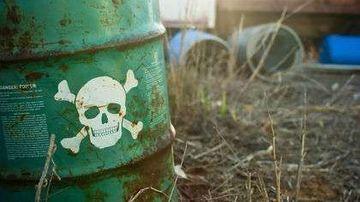 Te ingrasa toxinele din mediul inconjurator ?