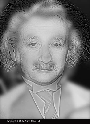 Marylin einstein imagine hibrida