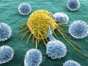 celulita sistem limfatic