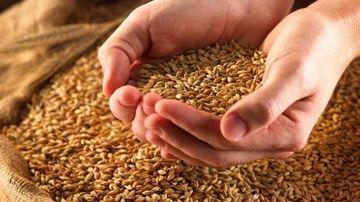 Sase indicii ca ai putea avea sensibilitate la gluten