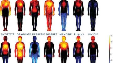Descopera harta emotiilor si de ce dragostea ne incalzeste corpul, in timp ce depresia ne