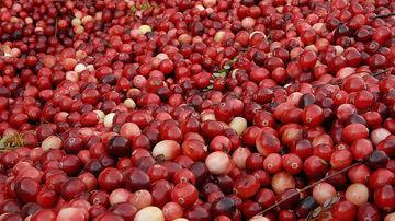 13 fructe cu proprietati vindecatoare uimitoare