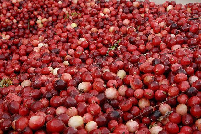 merisoare fructe
