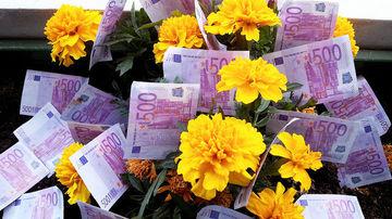 5 pasi pentru a atrage mai multi bani in viata ta