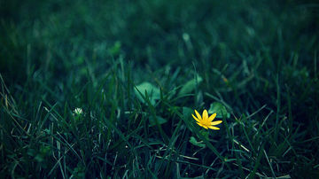 9 indrumari spirituale pentru o viata fara limite