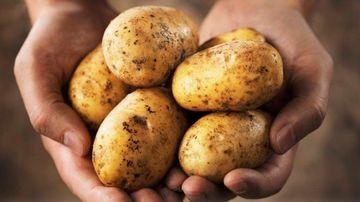 Sucul din cartofi cruzi: remediu pentru problemele gastro-intestinale