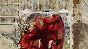 Fotografii incredibile ce arata cum fermele industriale distrug mediul inconjurator