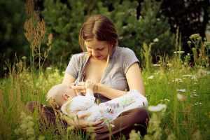 laptele matern mama