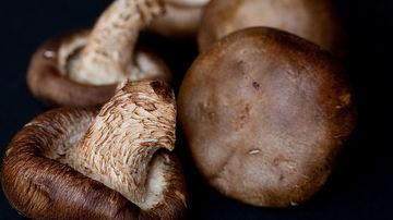 Ciupercile shiitake, un mod delicios si simplu de a-ti stimula imunitatea