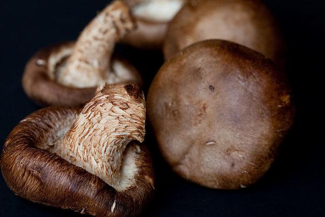ciuperci shitake