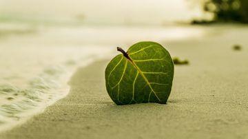 Primul pas spre o viata echilibrata: fii constient