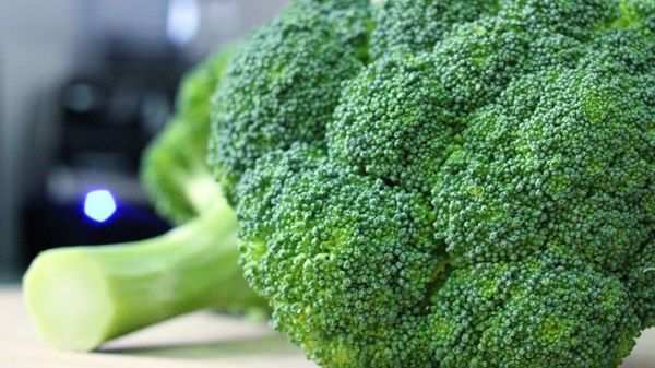 poate broccoli te face să slăbești pierderea in greutate pentru barbati la 60 de ani