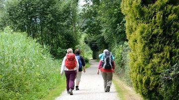 Cum o simpla plimbare in natura te poate ajuta sa te echilibrezi emotional