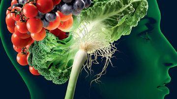 Cele mai bune alimente vegetale ce imbunatatesc memoria si capacitatea de concentrare