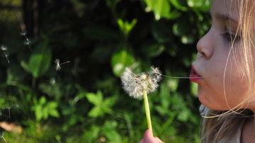 Cum poti creste copii recunoscatori intr-o lume care crede ca totul