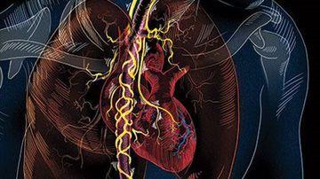 Nervul vag, conexiunea dintre subconstient si corp