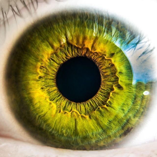 sanatate ochi degenerescenta maculara