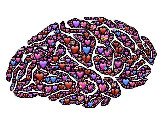 creier inima