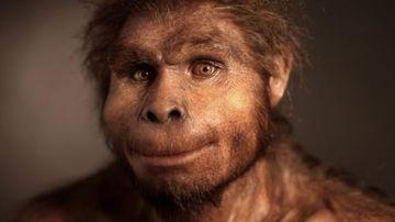 Descoperirea unei noi specii hominide modifica teoria evolutiei