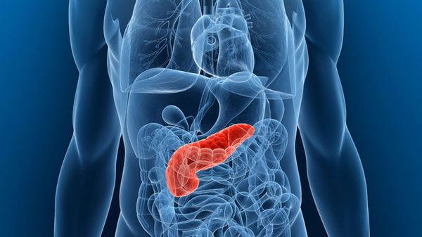 Pastile de dieta alli revenind sa slabesti rapid pastilele fen fen utilizează