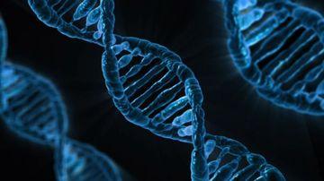 O noua perspectiva asupra sanatatii - la intersectia dintre chimie si biologie