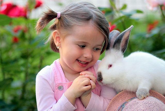 calitate copii empatie