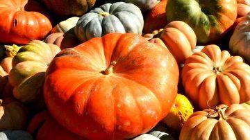 Proprietatile nutritive ale dovleacului si beneficiile acestuia pentru sanatate