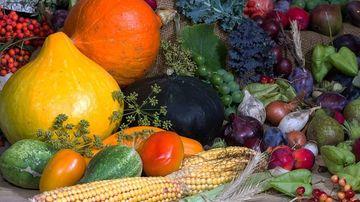 Fitonutrientii - puterea de vindecare a plantelor