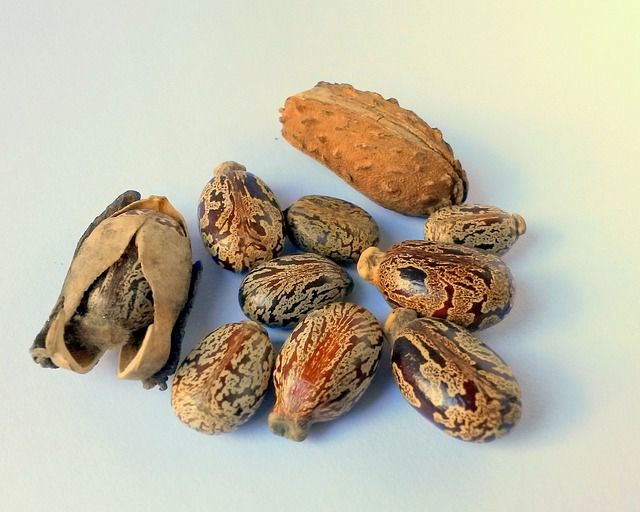bicarbonat si ulei de ricin beneficii